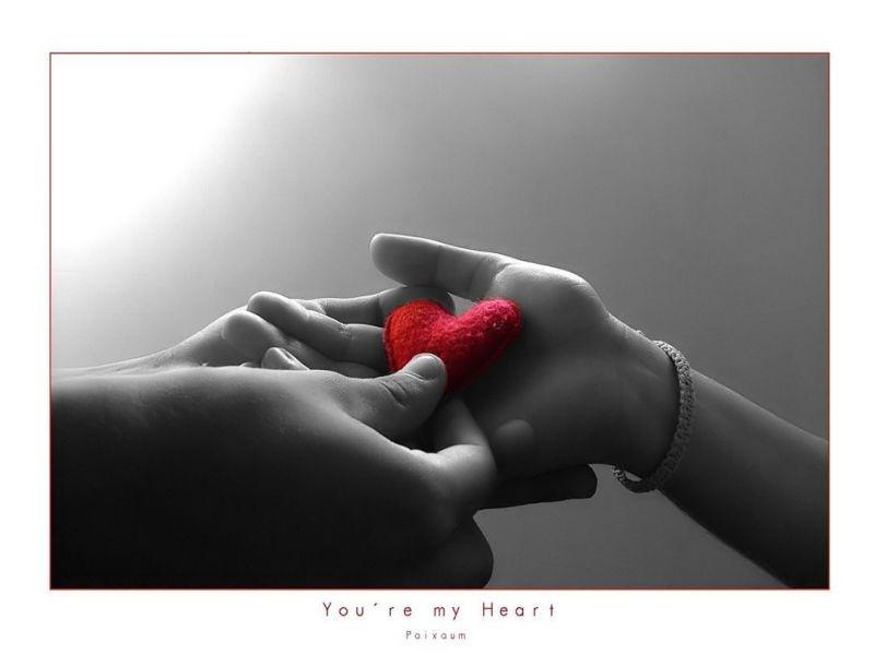 arancarme el corazon Te+lo+regalo
