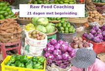 Raw Food Coaching Programma