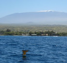 Click to Listen to Humpback whales live from Puako, Hawaii
