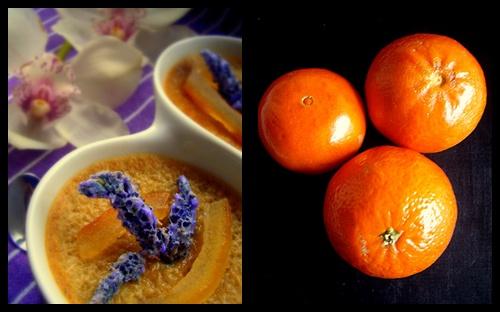 flores comestibles variedad y recetas - Taringa!