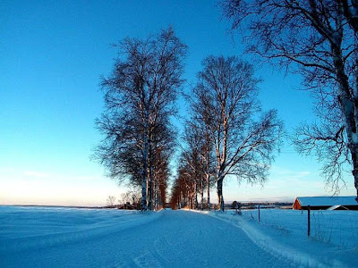 La hermosa Nieve
