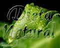 Dieta Natural
