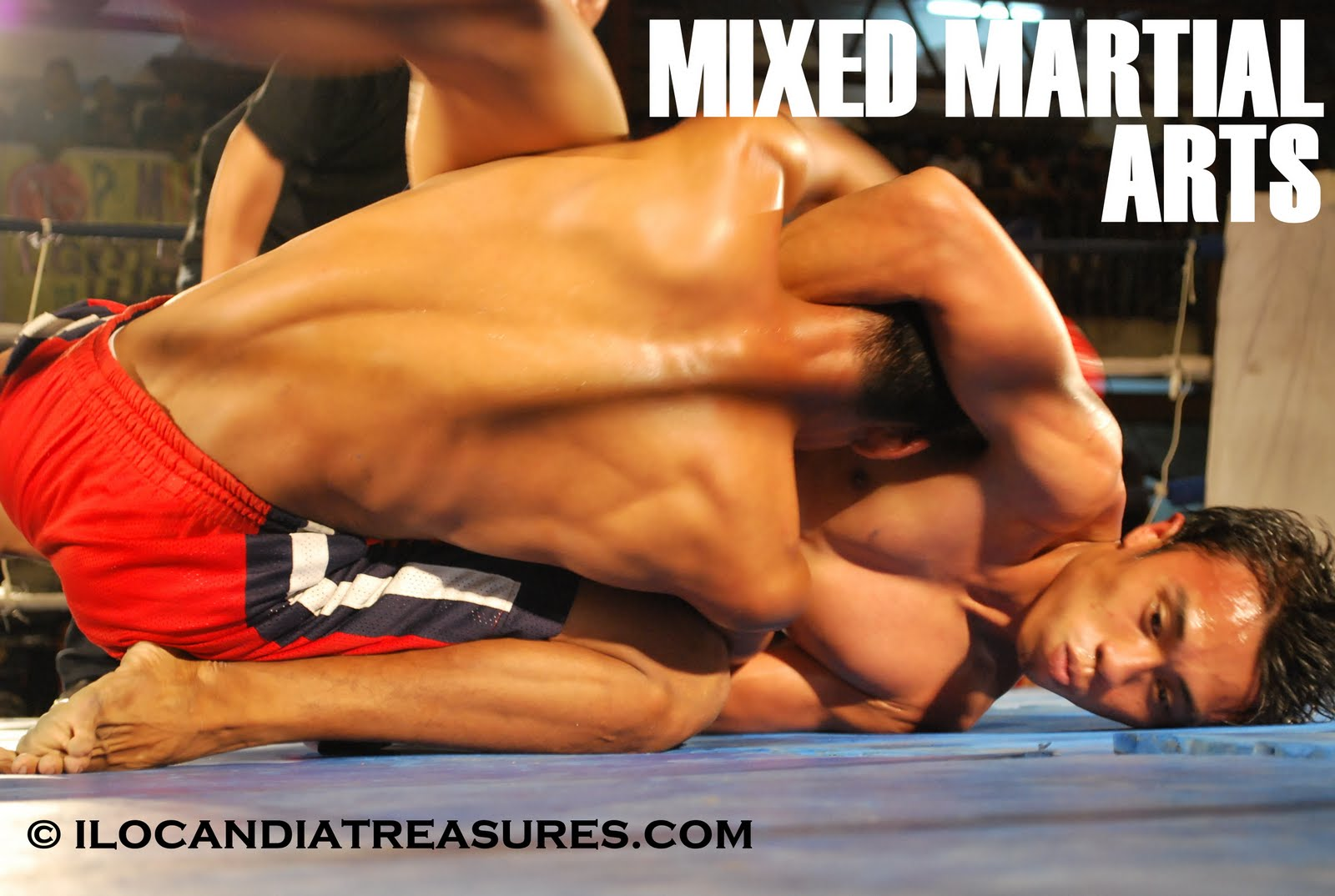 mixed martial arts a full contact Mixed martial arts (mma) is a full contact combat sport that allows the use of both striking and grappling techniques, both standing and on the ground today mma is a.
