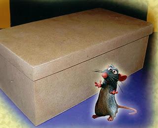 ratinho olhando para a caixa de sapato