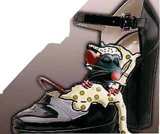 ratinho com uma coberta, dormindo dentro do sapato