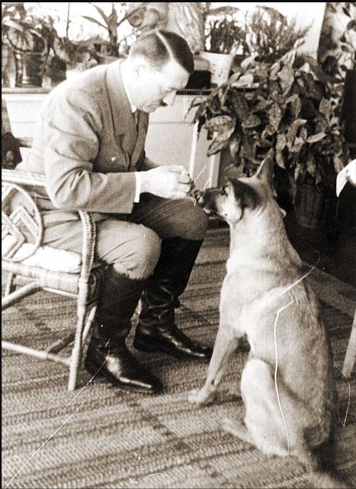 Nazis intentaron que perros aprendieran a leer, escribir y h