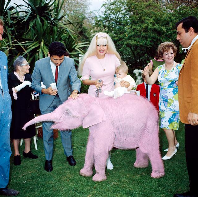 jayne mansfield mariska hargitay birthday pink elephant