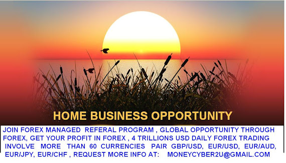 Forex home based business