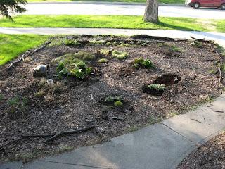 Full Frontal Garden pic 1