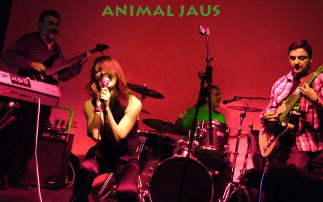 Animal Jaus y otras crónicas rockeras