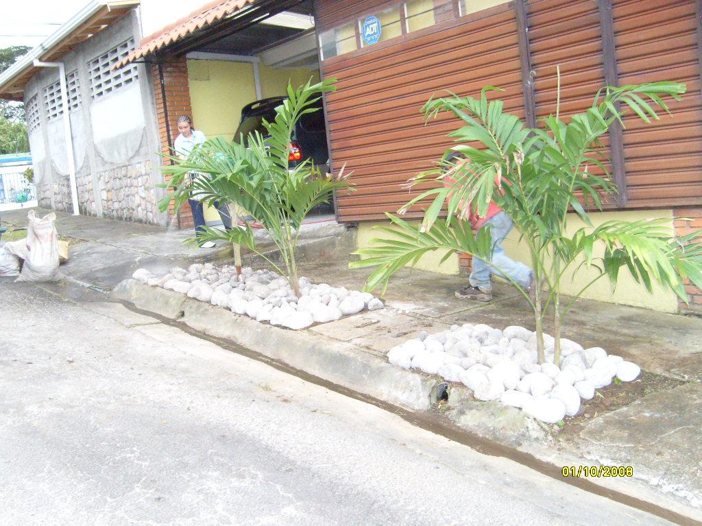 Mantenimiento y dise o de jardines jard n gris - Jardines con poco mantenimiento ...