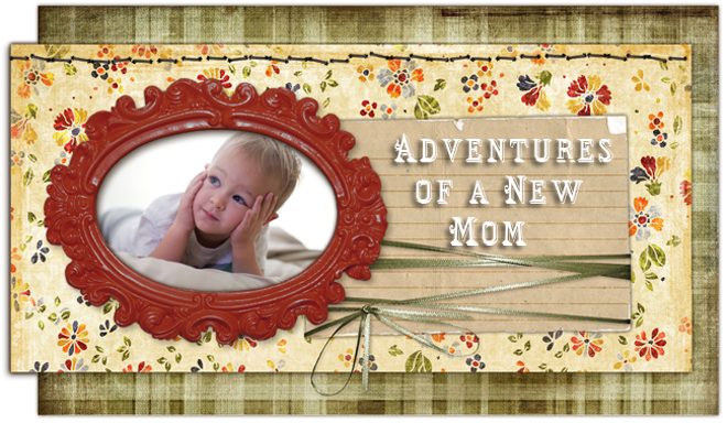 Adventures of a New Mom