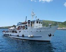 Cruzeiro das Ilhas