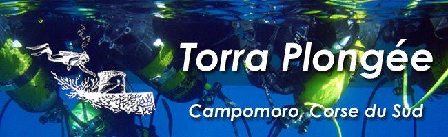 La plongée sous-marine à Campomoro, Corse