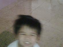 DARCY JR