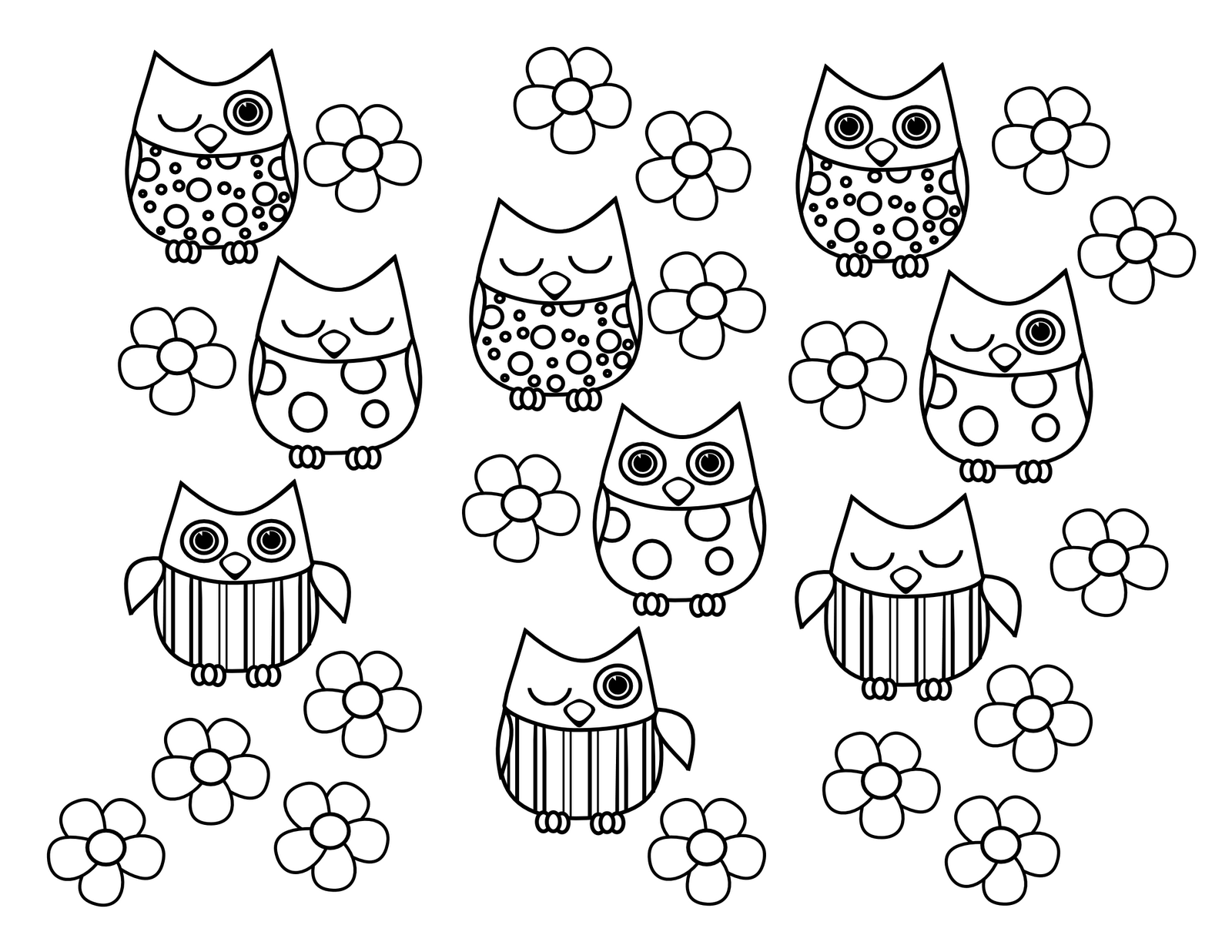 Baby Owl Coloring Pages Printable Desktop HD
