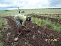 Planting in Vichada, Colombia