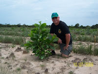 Dexter Dombro with 2 month old tropical tree
