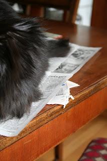 Paper is almost as good as socks