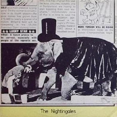 Cliff Richard S Neck Nightingales 3rd Peel Session 12