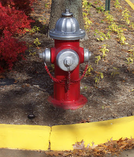 Red Fire Hydrant in Fairfax, Virginia