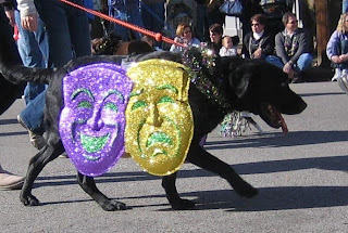 Black Lab with smiling and frowning masks hanging on his side.