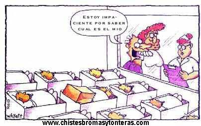 humorrr graficoo