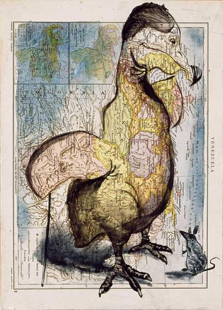 [Pájaro-Dodo.jpg ]
