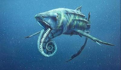 ปลา ฉลาม ประหลาด