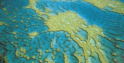 แนวปะการัง ที่ ใหญ่ที่สุด และ สวยที่สุดในโลก