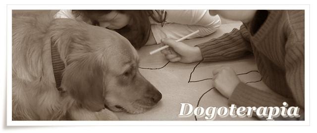 Terapia z udziałem psa