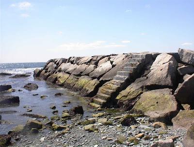 Seasteps