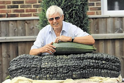Worlds Largest Marrow (113 Lbs or 65 Kg)