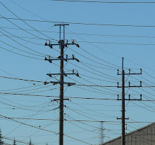 驚きの3回線の配電線!!!これが見えるのは工業団地ぐらい。だが、関西電力には確か普通にどっかにあったはず!それから中国電力も!いや、そちらは3回線以上か