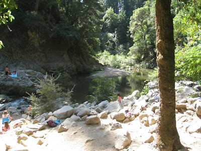 Swimming Holes Of California San Lorenzo River Garden
