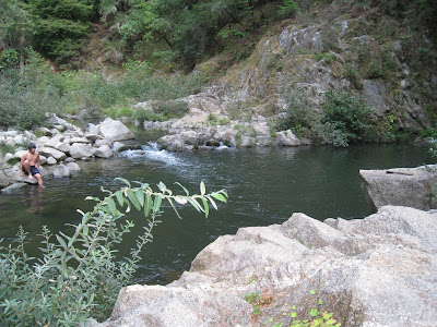 swimming holes of california san lorenzo river garden of eden cable car beach felton