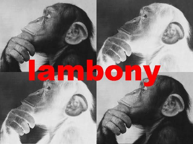 Lambony