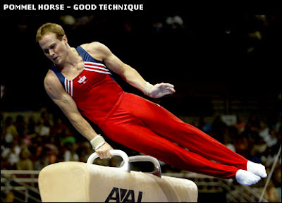 The Pommel Horse used in gymnastics