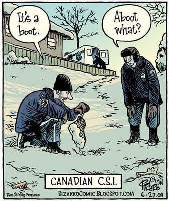 Canadaian CSI
