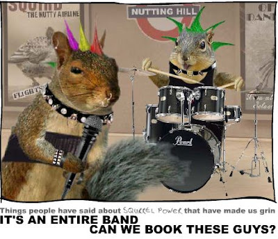 Squirrel Power - Click here!