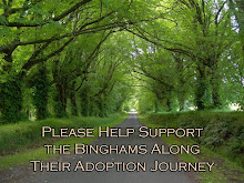 Bingham Adoption - Please help support the Binghams along their adoption journey