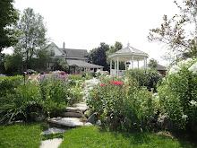 Lynda's Farm
