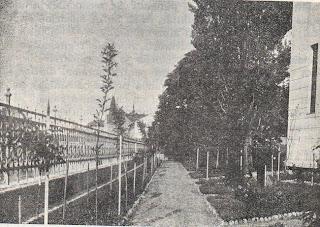 Grădina liceului