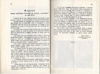 Raport Societate Luceafărul