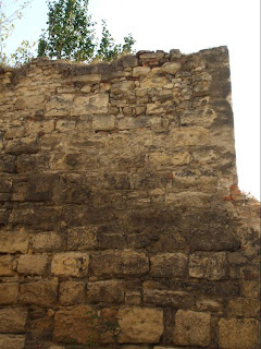 Zidul din curtea colegiului