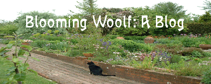 Blooming Woolf
