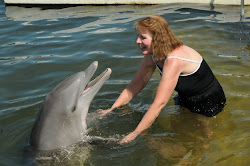 Sandi's dolphin encounter