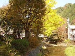 River, Takao