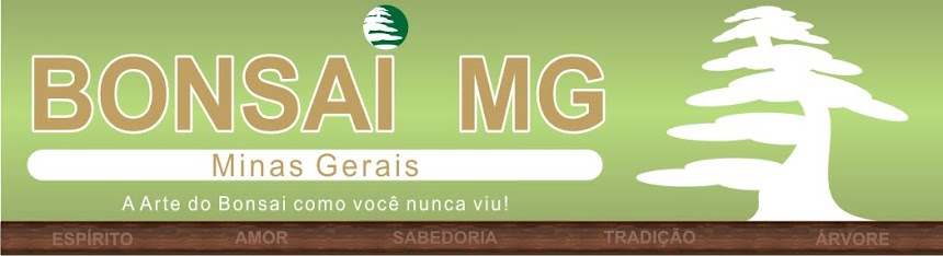 BONSAI MG   .   Bonsai Minas Gerais