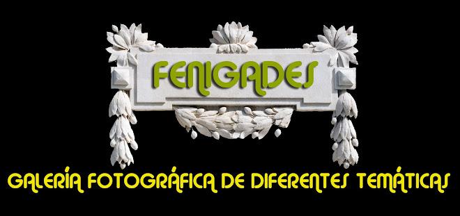 FENIGADES